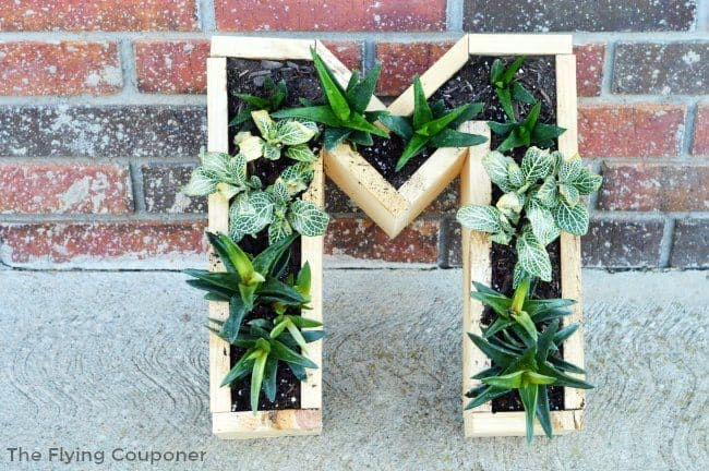 DIY-Monogram-Succulent-Planter.-DIY-Projects.